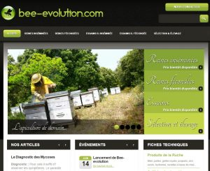 Bee-evolution