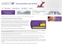 Insecto – Stage d'apiculture